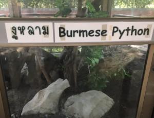 bangkok_snake_farm_image10.jpg