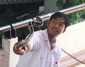 bangkok_snake_farm_image20.jpg