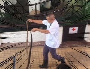 bangkok_snake_farm_image27.jpg