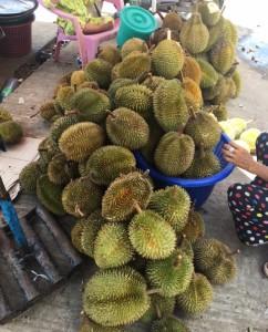 drian_Myanmar_fruit_Myeik01.jpg