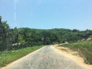 southern_myanmar_beach_new01.jpg