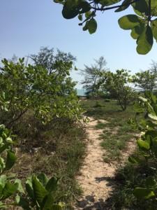 southern_myanmar_beach_new11.jpg