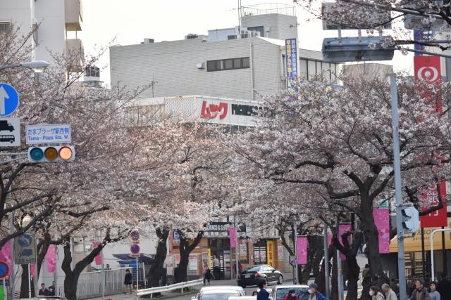 桜2017040200000016
