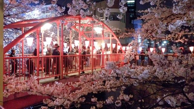 桜20170400000003