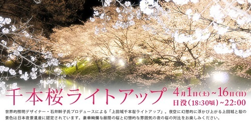lightUp_20170329113657d05.jpg
