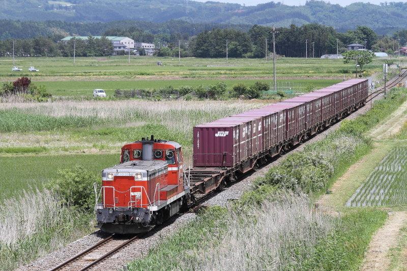 D1605_2362_DE103510_KAMIWAKUYA_KOGOTA.jpg