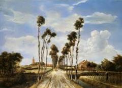 9 ホッベマ ミッデルハルニスの並木道