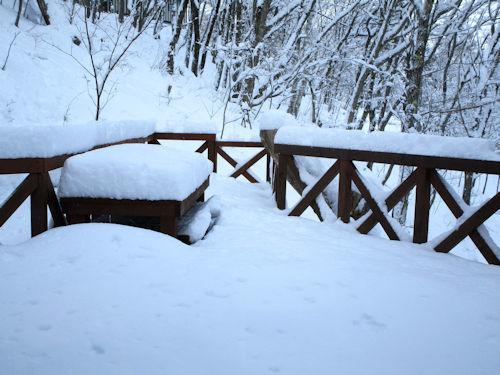 積雪35センチ!1