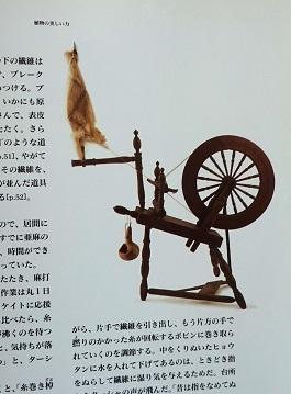 DSC06970 - コピー