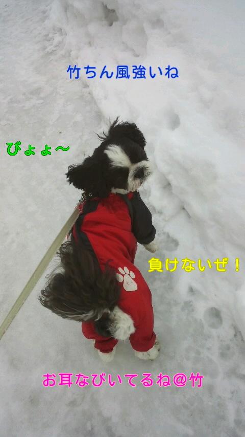 moblog_957c0957.jpg
