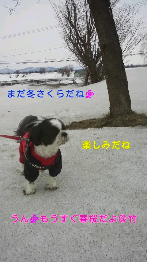 moblog_b369691c.jpg