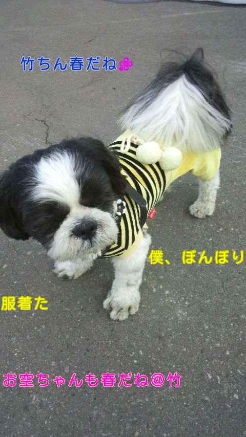 moblog_b9759c45.jpg