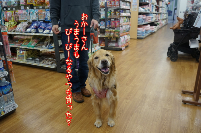 image1_20170410142126c79.jpg