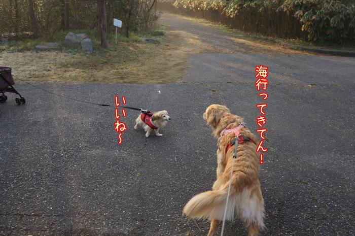 image7_20170322164320f46.jpg