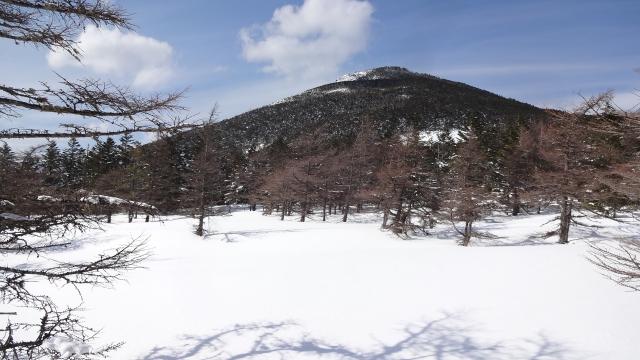 トレイルからの茶臼山