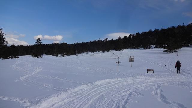 麦草峠大雪原