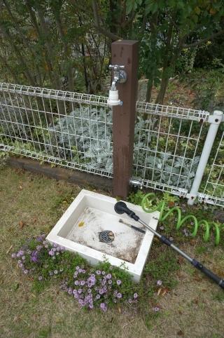 立水栓 花