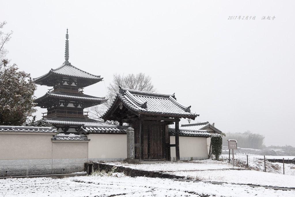 20170209 法起寺 (2)