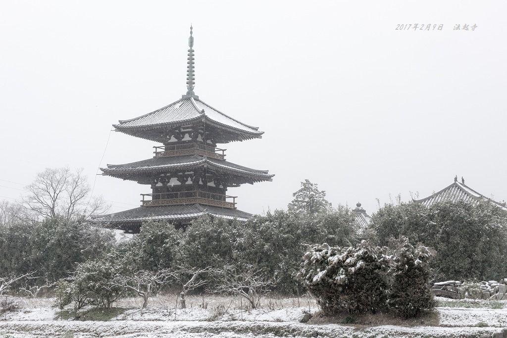 20170209 法起寺 (4)