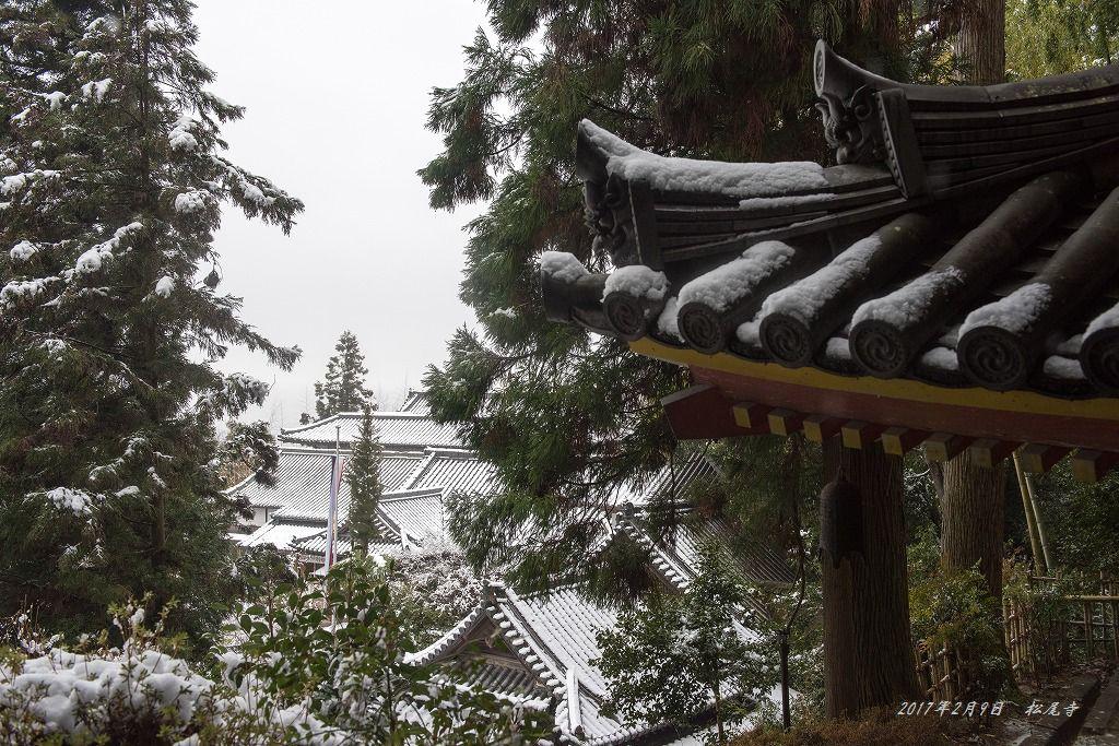 20170209 松尾寺 (4)