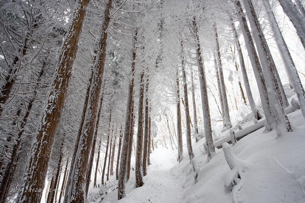 20170212 三峰山 雪山登山 (2)