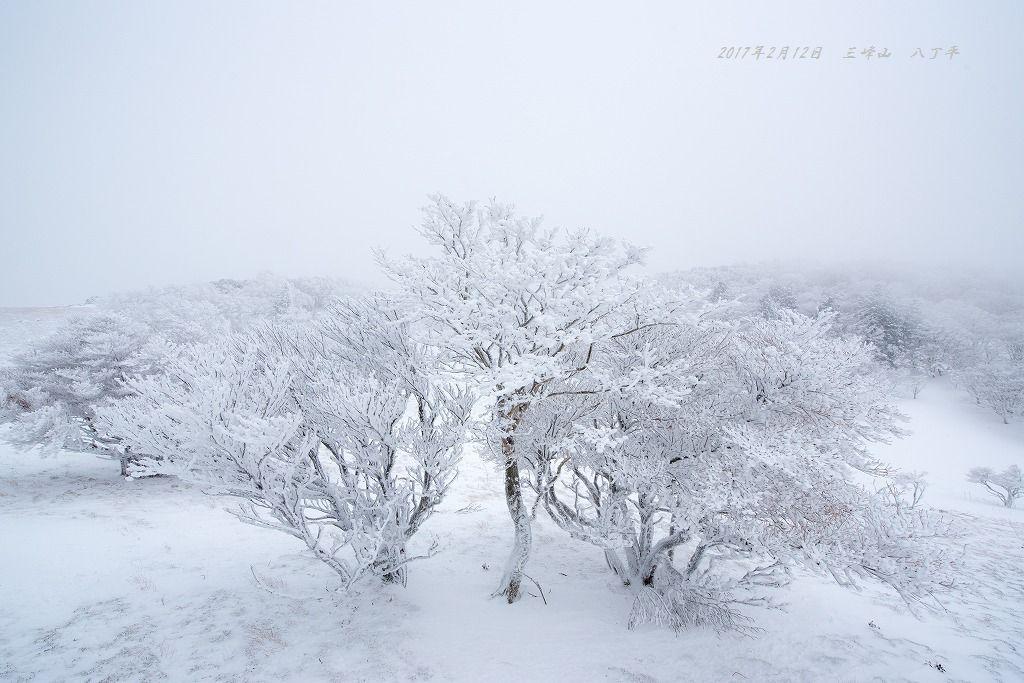 20170212 三峰山 八丁平 (1)