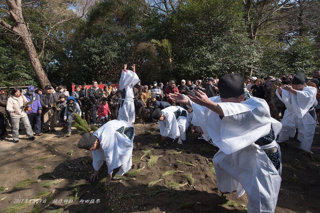 20170219 鏡作神社 御田植祭 (9)