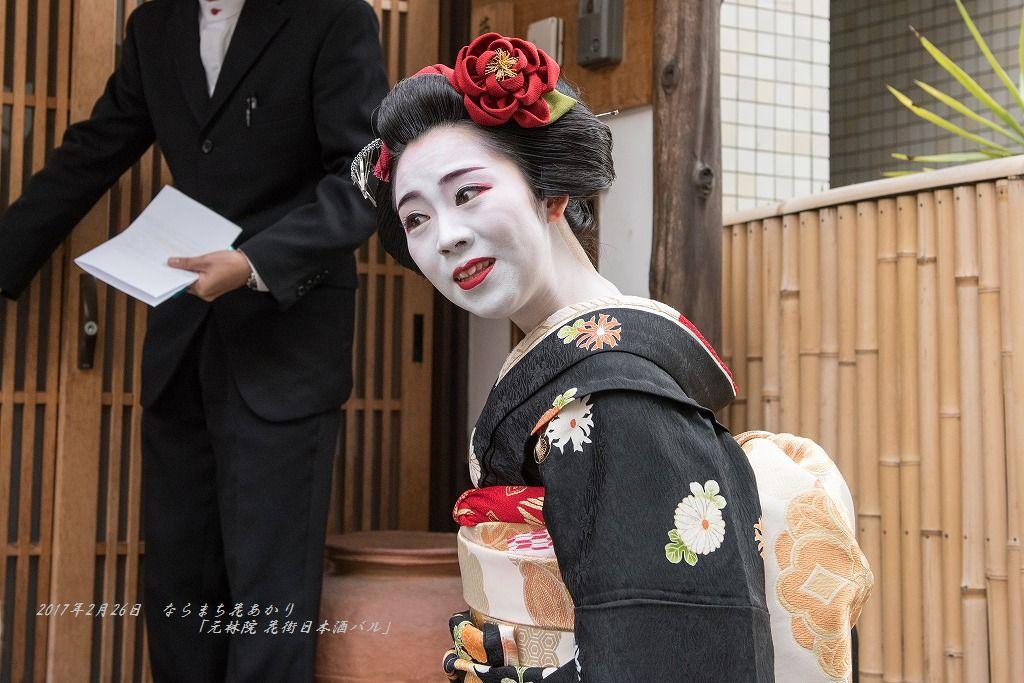 20170226 ならまち花あかり (3)