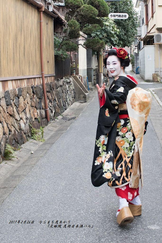 20170226 ならまち花あかり (4)