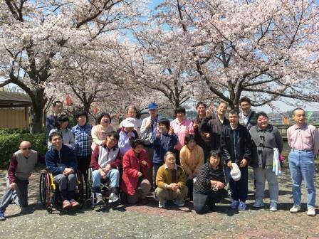 もえぎ花見2017-2
