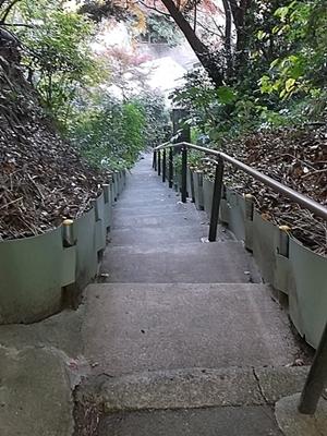 DSCF3992 にんにん階段