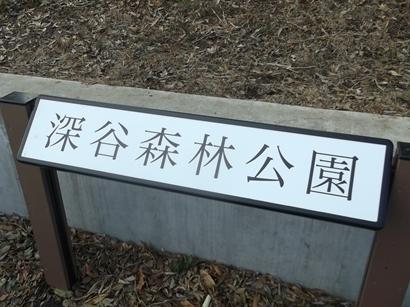 kDSCF4926深谷森林公園