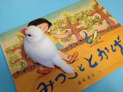 mitsukototoka.jpg