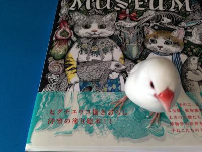 museum_.jpg