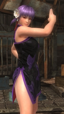 DEAD OR ALIVE 5 Last Round_20170220000342