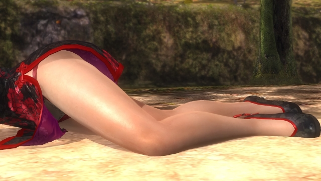 DEAD OR ALIVE 5 Last Round_20170221215855