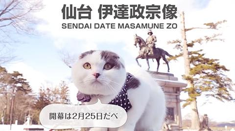 maijiyasuda_jleaguecats