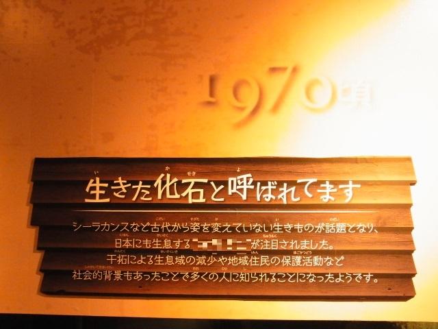 R0018653 - コピー