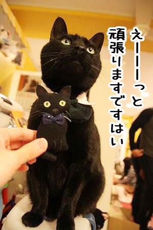 しろう店長20170405-02