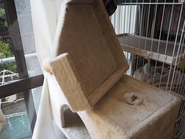 h29,1猫タワー倒壊修復不可能