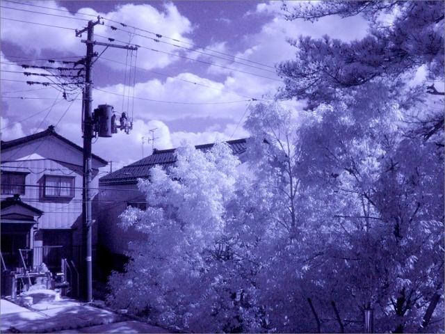 20170401-15-DSCF0058-01-a★