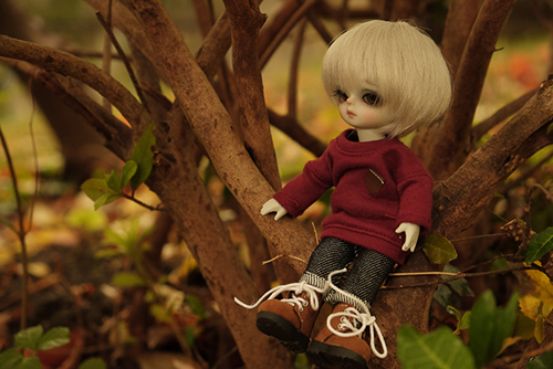 WITHDOLL、Happy Ending Story - Wolf Rudyのルディ。ジーンズ風のズボンを縫ってあげたので、秋のお出かけ。
