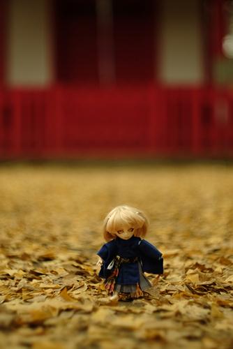 オビツ11ボディ、PARABOXプチフェアリーヘッドをカスタムして作った鬼っ子の朱鷺丸。小さな弁天神社で、まるで鬼神の使いのようにも見える。