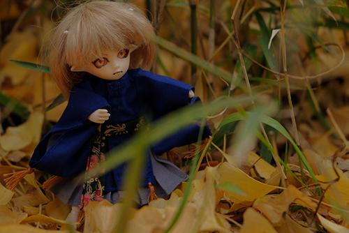 オビツ11ボディ、PARABOXプチフェアリーヘッドをカスタムして作った鬼っ子の朱鷺丸。秋の草むらの中を駆け回り、躍動する姿を見せてくれた。