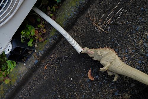 室外機の排水管から水を飲む、シン・ゴジラ第二形態、蒲田くん