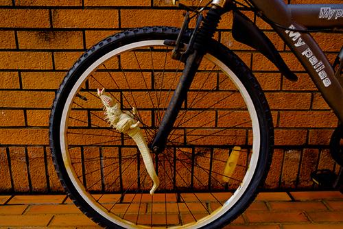 自転車の車輪の間に入って遊んでいたら、いきなり車輪が回りだして焦る、シン・ゴジラ第二形態、蒲田くん