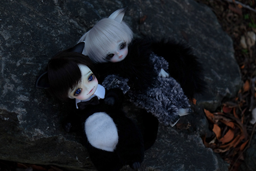 WITHDOLL、Happy Ending Story - Wolf Rudyのルディと、WITHDOLL、Halloween Limited Edition / Black Cat / Butler Pookyのキオ。モフモフけもっ子2匹で、お外にお出かけ