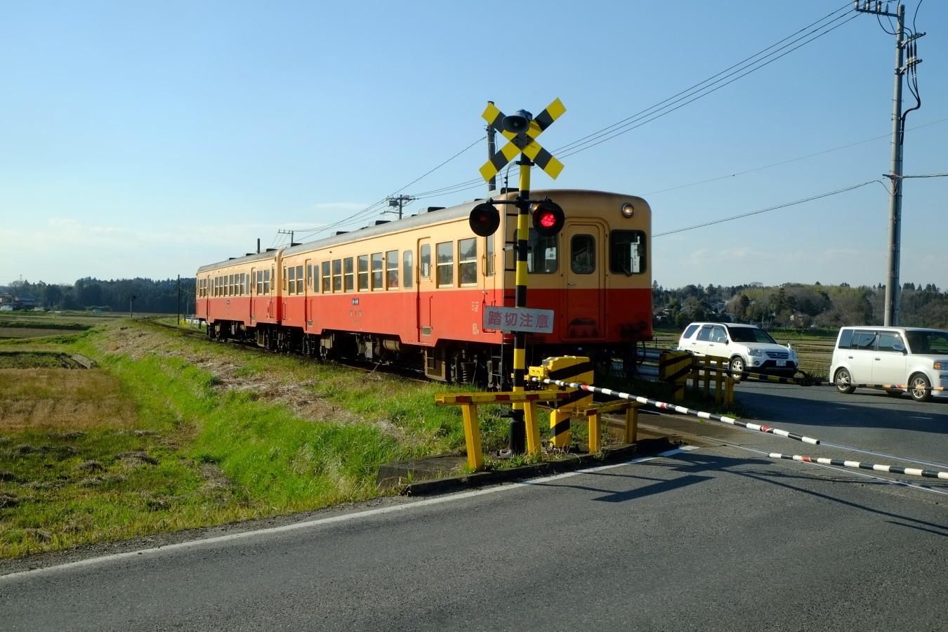 DSCF0113-fc2.jpg