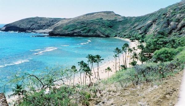 20170305 昔のハワイ