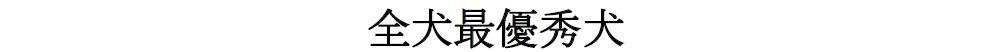 20170326岐阜02